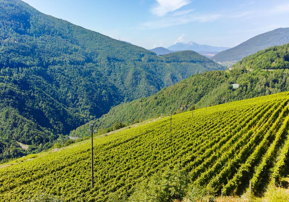 Wijnregio Lombardije